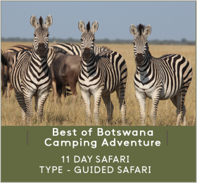 BEST-OF-BOTSWANA-CAMPING-ADVENTURE