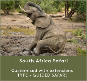 SOUTH-AFRICA-SAFA