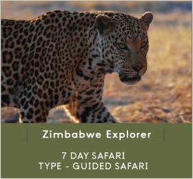 ZIMBABWE-EXPLORER